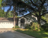 8307 N River Oaks Court, Tampa image