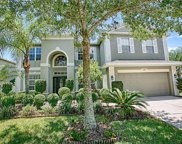 5145 Rishley Run Way, Mount Dora image