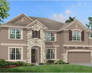 13208 Sunset Shore Circle, Riverview image