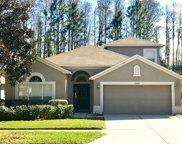 21814 Waverly Shores Lane, Land O' Lakes image