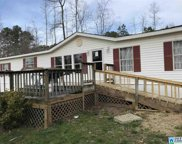 420 Sheffield Dr, Oneonta image
