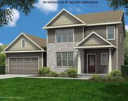 10315 Shady Birch Trl, Madison image