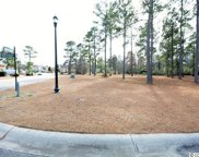 1162 Fiddlehead Way, Myrtle Beach image