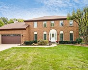805 Old Orchard Avenue, Downers Grove image