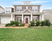 1713  Painted Horse Drive, Indian Trail image