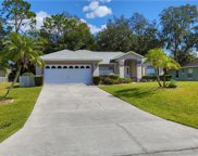2905 Eldiente Way, Kissimmee image