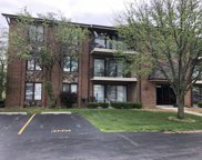 15349 West Avenue Unit 4502, Orland Park image