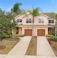 13138 Sonoma Bend Place, Gibsonton image