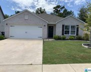 2035 Kerry Cir, Calera image
