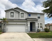 11145 Golden Silence Drive, Riverview image