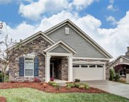 1302  Haywood Park Drive, Marvin image