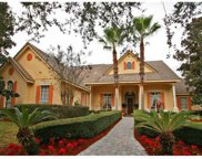8924 Elliotts Court, Orlando image