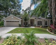 2101 Fawn Meadow Drive, Valrico image