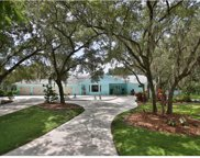 5247 Box Turtle Circle, Sarasota image