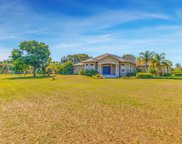 10502 Lithia Estates Drive, Lithia image
