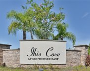 11503 Luckygem Drive, Riverview image