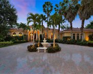 15202 Brolio Way, Naples image