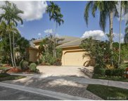 2466 Eagle Run Way, Weston image