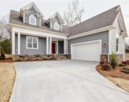 17431  Green Hill Road, Charlotte image