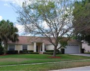 1817 Seedling Court, Clermont image