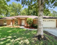 4329 CARRIAGE CROSSING DR, Jacksonville image