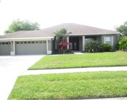 2814 Mossy Timber Trail, Valrico image