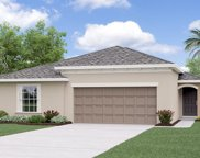 10234 Strawberry Tetra Drive, Riverview image