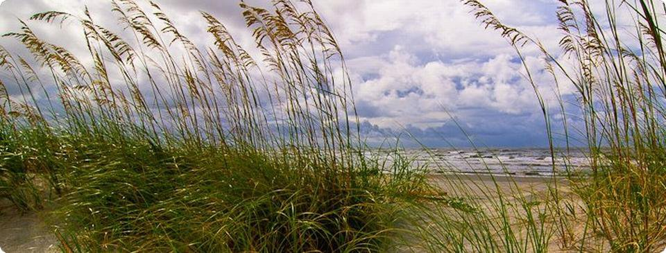 Wild Dunes South Carolina Real Estate Picture