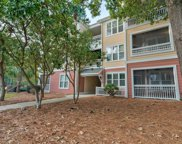 100 Bucksley Lane Unit #301, Charleston image
