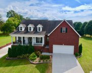 1611 Spear Point Ln, Sevierville image