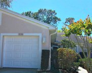 4154 Chesterfield Circle, Palm Harbor image