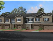 15148 Sunrise Grove Court, Winter Garden image