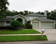 1158 Needlewood Loop, Oviedo image