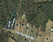 242 Cat Tail Bay Dr, Conway image