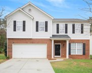 16019 Long Talon  Way, Charlotte image
