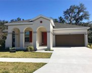 3261 Solitude Court, Kissimmee image