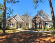 54 Bald Cypress Ct, Pawleys Island image