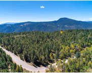 12171 South Ridge Road, Conifer image