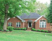 1000 Cherry Springs Dr, Cottontown image