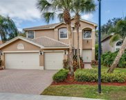 2367 Butterfly Palm DR, Naples image