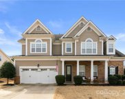 1106 Gold Rush  Court, Fort Mill image