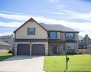 388 Springlakes Estates Drive, Lyman image