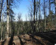 Lot 2 Scenic Woods Way, Sevierville image