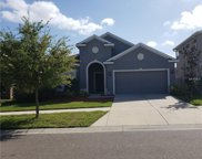 12110 Whistling Wind Drive, Riverview image