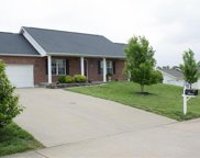 150 Blue Willow, Cape Girardeau image