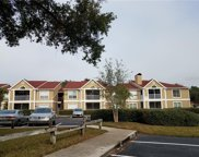 9481 Highland Oak Drive Unit 813, Tampa image