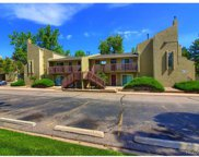 5300 East Cherry Creek South Drive Unit 1101, Denver image