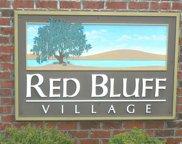 12 lots Red Bluff Village, Longs image