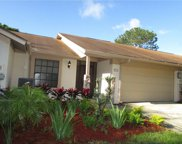 4006 Shoreside Circle, Tampa image