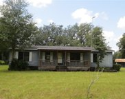 21147 Old Taylor Road, Dade City image